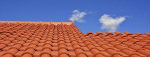 Votre artisan est spécialiste en nettoyage et lavage des toitures et des façades à Graulhet